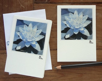 water lily card set, blue flowers, flower invitations, water lilies cards, blank floral note card