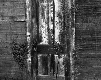 Fine Art Black & White Photograph Weathered Door