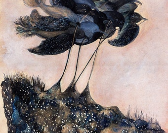 Bird Art // Nursery Art // Fine Art Print // Fragments of Midnight