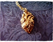 Gold Anatomical Heart Necklace - Bronze Anatomical Heart Charm on a Delicate 18 Inch 14kt Gold Filled Cable Chain