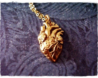 Gold Anatomical Heart Necklace - Bronze Anatomical Heart Charm on a Delicate 14kt Gold Filled Cable Chain or Charm Only