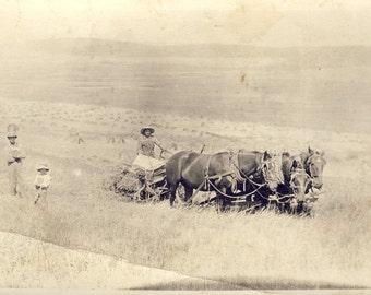 Farm Scene of HORSE DRAWN POUGH Working The Fields Photo Postcard Circa 1910