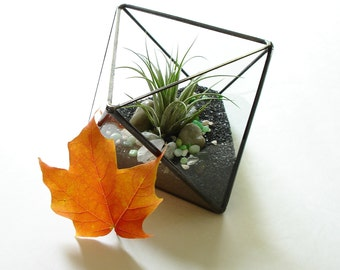 Geometric Terrarium, Glass Octahedron Terrarium Planter, Stained Glass Planter, Handmade Planter, Terrarium Kit