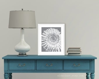 Nautilus Art Print - Nautical Art -  Spiral Fossil Print - Slate Grey - Sea Life - Beach House Decor