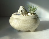 Pug Buddha Sculpture Stone Zen Garden Air Plant Keepsake Bowl