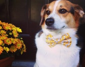 Yellow Dog Collar & Bow Tie / Boy Dog Collar / Floral Dog Collar / Dog Bowtie / Bow tie dog collar / Yellow Gold Dog Collar