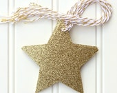 10 Die Cut Gold Glitter Star Christmas Holiday Gift Tags / Favor Tags (3.5 inches) with Gold & White Baker's Twine