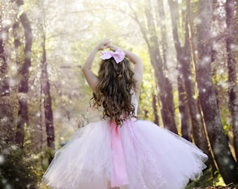 Pink Princess Ballerina Tulle Tutu Costume for Recitals, Theater Productions, Pageants, Professional Photography