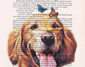 Golden Retriever with butterflies Animal painting Mixed Media wall hanging Digital Illustration Print Drawing Illustration Decorative