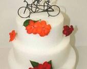 Bride and Groom Tandem Bike Wedding Cake Topper