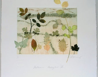 Autumn hedgerow botanical print. Fall colours. Devon landscape
