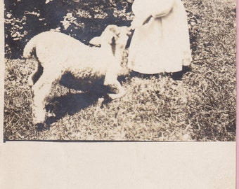 "Ca 1907-09 ""Girl Feeding a Lamb"" Real Photo Post Card  - 1804"
