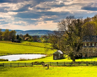 Pond and house on a farm in rural York County, Pennsylvania - Rural Landscape Fine Art Print or Wrapped Canvas