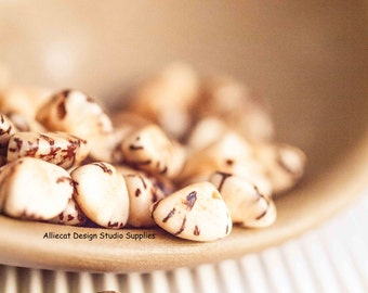 20 Natural 5mm Salwag Seed Nugget (CB005)
