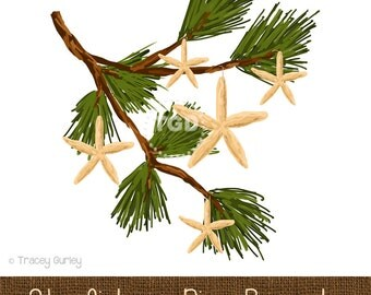 Starfish on Pine Branch- Original Art Download  - holiday clip art, pine clip art, pine branch art, starfish art, beach christmas