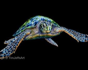 Sea Turtle Colored Pencil Drawing