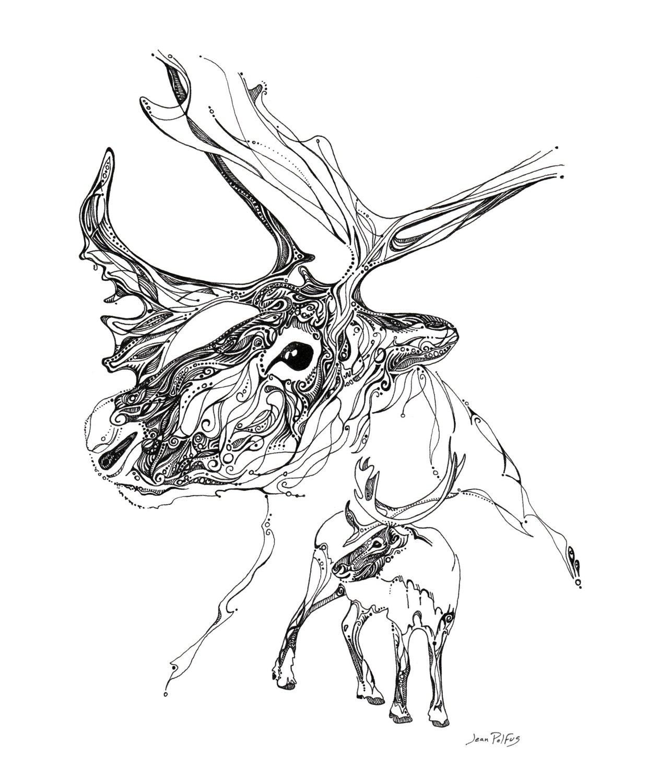 Line Drawings Of Woodland Animals : Caribou spirit drawing illustration line