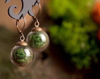 Real moss earrings, nature earrings, green earrings, green dangle earrings, antique brass earrings, glass vial earrings, glass earrings