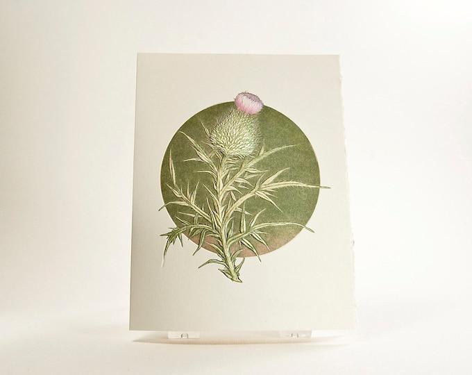 Thistle Note Card. Scottish Thistle. Letterpress. Embossed. Single card. Blank inside.