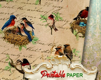 VINTAGE BIRDs - Printable wrapping paper for Scrapbooking, Creat - Download and Print
