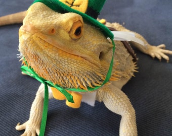 st day leprechaun outfit for bearded dragons one size fits most