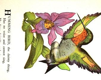 Moss - Bird Children - 1939 - RUBY Throated HUMMING BIRD - Drink Flower Honey - Professionally Matted Children's Book Illustration Art Print