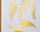 Modern Ferns Ceramic Decals, Glass Decals or Enamel Decals