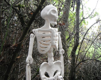 Halloween Decor. Ceramic Skeleton. In Bone White.