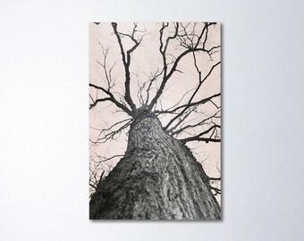 Large Tree Art, Canvas Wall Art, Vertical Photography, Neutral Decor, Fine Art Canvas, Beige Decor