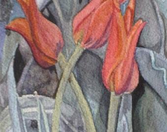 Water Color : Original Lily Tulip Watercolor Painting. Tulip painting. Floral watercolor. Tulip wall art. Tulips picture. Tulip artwork.