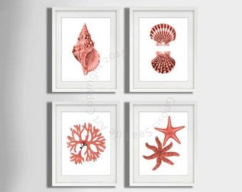 Coral Pink seashell Art Print set of 4, seaside art, Starfish art Print, Seashell art print, seaweed, Beach wall art Decor, Nautical Decor