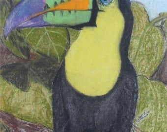 Tropical Toucan in Trees Pastel Painting - PRINT COPY