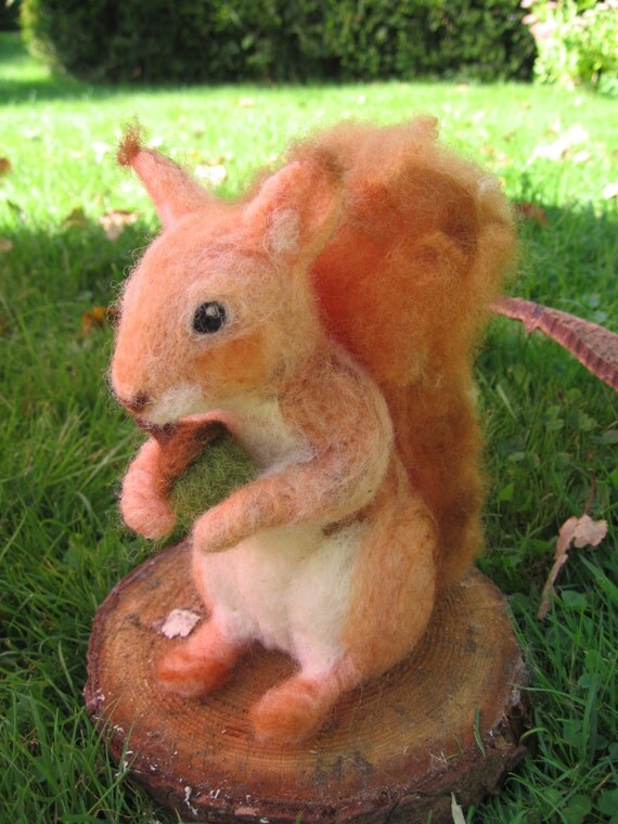 how to use squirrel pos