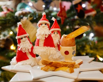 Father Christmas Egg Cosies Knitting Kit