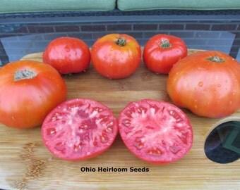 Gordost Sibiri (Pride of Siiberia)- Organic- Rare Russian Heirloom- 20+ Seeds
