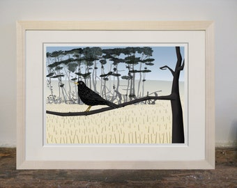 Mounted Blackbird Print