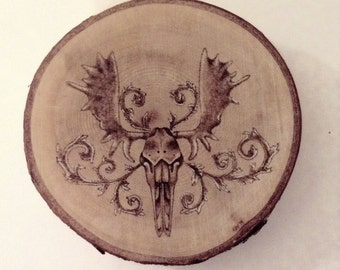 Moose Skull Wood Burning