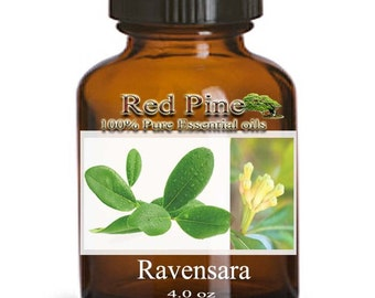 Ravensara Essential Oil - Ravensara aromatica - 100% Pure Therapeutic Grade