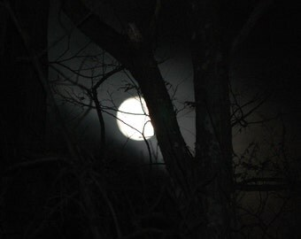 Full Moon, Outdoor Photography, Hurrican Sandy, Nature Photography