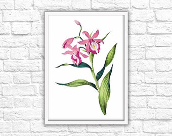 Pink Flower Print - Instant Download - Printable Wall Art Decor