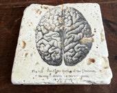 Vintage Anatomy Brain Coasters, 4 Piece Set, Tumbled Marble (OR MIX & MATCH)
