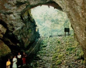 Cave no. 07 /// Mid Century 1950's Vintage Postcard