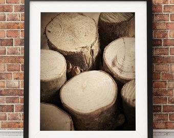 Log Photograph print colour photography woodland print original colour print Woodland Photography