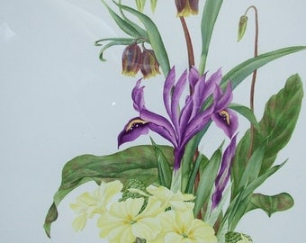 Original watercolour painting of Spring Flowers. Unframed and without mount.