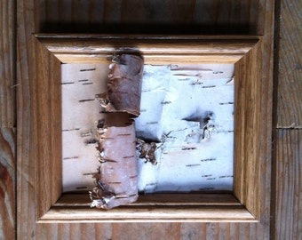 Framed Birch Bark. Just a little bit of a tree.