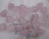 25 pcs. striped hurricane Czech glass leaf beads pink 12x10mm - f4471
