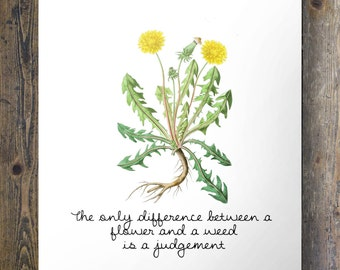 The only difference between a flower and a weed is a judgement | botanical dandelion | Printable wall art | instant download
