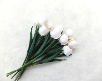 Mulberry paper white tulips