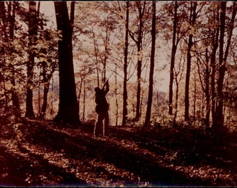 vintage photo 1960s Color Unusual Laminated Hunter Man w Gun Rifle in Woods