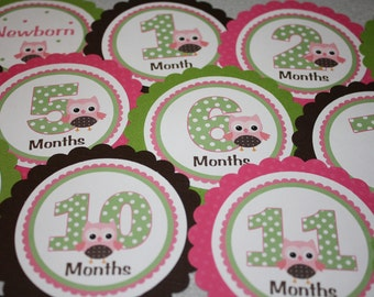 OWL Baby's 1st Year Tags / Owl 1st Year Tags / Owl First Year Tags / Owl Monthly Photo Tags / Owl Birthday Party